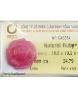 Hoa mẫu đơn đá quý ruby DRBH24.79
