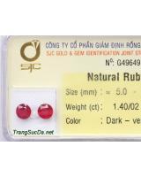 Bông tai trang sức đá ruby DRBB1.4