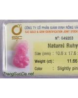 Tỳ hưu đá quý ruby DRBTH11.66