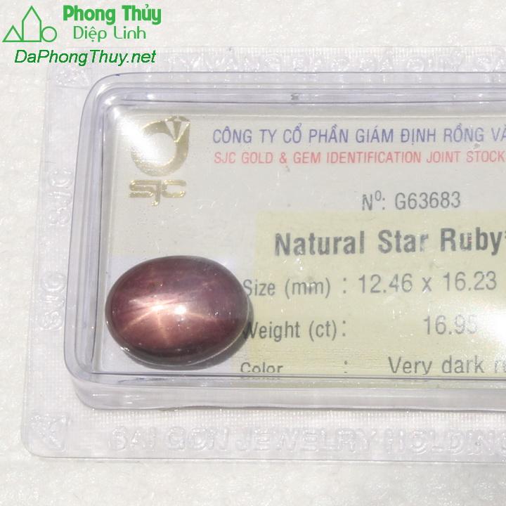 Viên đá ruby sao kiểm định tự nhiên RBS16.95